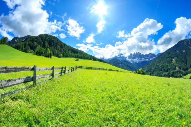 Alpen Landscape -  Green field and Sunny Blue Sky - Spring meadow:スマホ壁紙(壁紙.com)