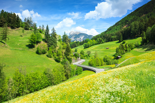 Chalet「Alpen Landscape - Rolling Hills, Meadows, and Country Road」:スマホ壁紙(6)