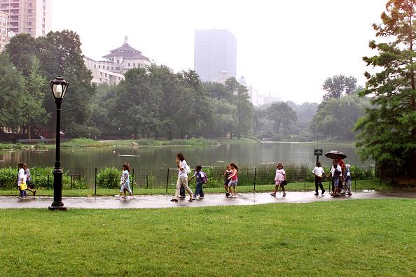 マンハッタン セントラルパーク「Small Crocodile Spotted In Central Park」:写真・画像(0)[壁紙.com]