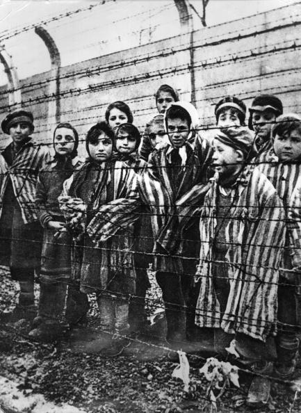 Concentration Camp「Child Survivors Of Auschwitz」:写真・画像(16)[壁紙.com]