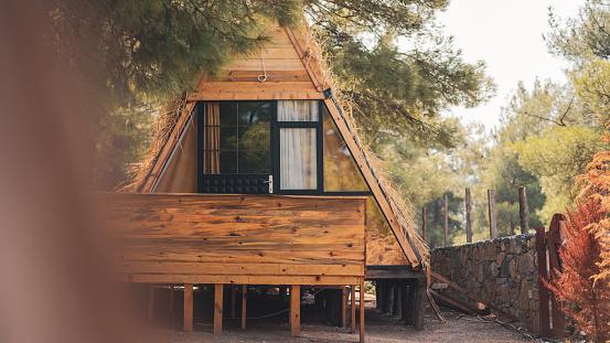 Passenger Cabin「house in the forest」:スマホ壁紙(5)