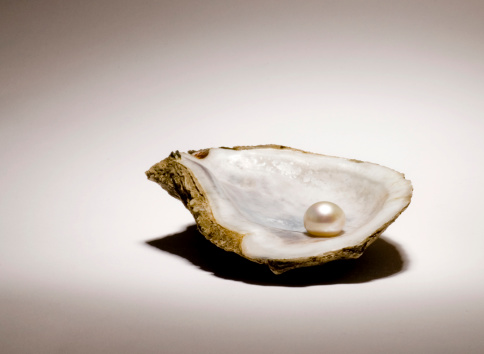 shell「Singe pearl sitting in an oyster shell on a light background」:スマホ壁紙(6)