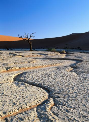 Riverbed「Dry River Bed in Namib Desert」:スマホ壁紙(13)