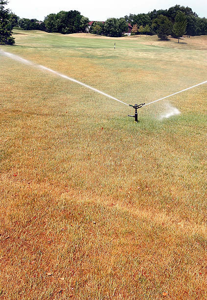 Illinois Crops Threatened By Drought-Like Conditions:ニュース(壁紙.com)
