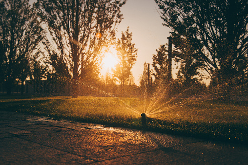 Watering「Water sprinkler in a garden at sunset」:スマホ壁紙(9)