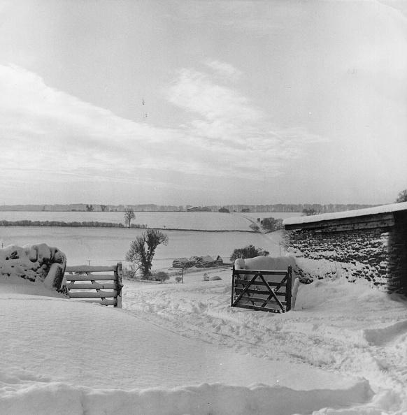 Tranquil Scene「Winter Countryside」:写真・画像(1)[壁紙.com]