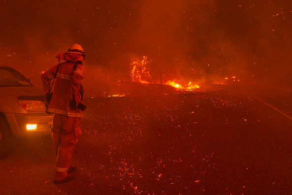 Forest Fire「Creek Fire Grows Rapidly Near Shaver Lake, California」:写真・画像(18)[壁紙.com]