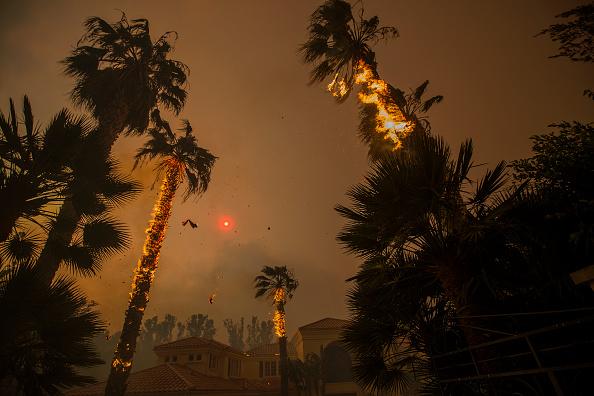 カリフォルニア州「Fast-Spreading Hill and Woolsey Fires Force Evacuations In California's Ventura County」:写真・画像(7)[壁紙.com]