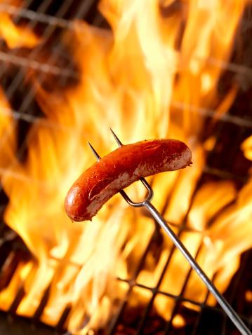 Hot Dog「Hotdog (Smokie) Cooking on the Campfire」:スマホ壁紙(16)