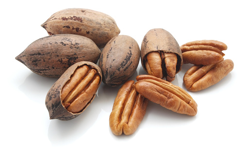 Pecan「A group of pecan nuts on a white background」:スマホ壁紙(14)