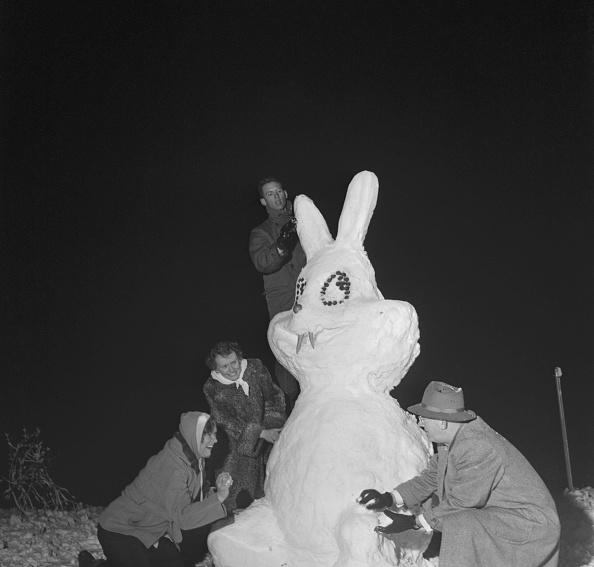ニンジン「Giant Rabbit Snowman」:写真・画像(17)[壁紙.com]