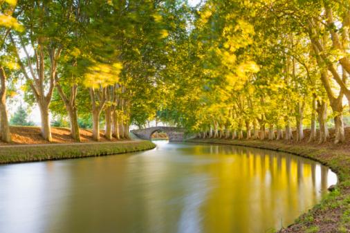 Languedoc-Rousillon「France, Languedoc-Roussillon, Carcassonne, Canal du midi」:スマホ壁紙(3)