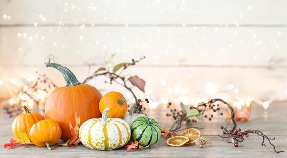 Pumpkin「Autumn holiday pumpkin arrangement against an old white wood background」:スマホ壁紙(13)