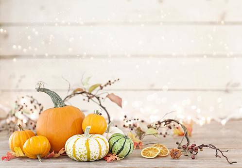 Branch - Plant Part「Autumn holiday pumpkin arrangement against an old white wood background」:スマホ壁紙(17)