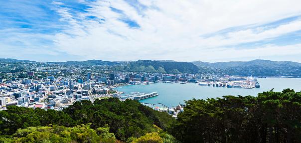 New Zealand Culture「Panoramic Cityscape of Wellington, New Zealand」:スマホ壁紙(11)
