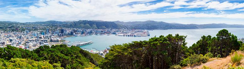 New Zealand「Panoramic Cityscape of Wellington, New Zealand」:スマホ壁紙(8)
