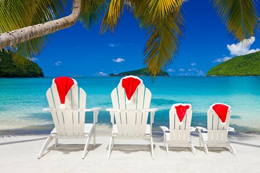 Frond「family Christmas at the Caribbean beach」:スマホ壁紙(14)
