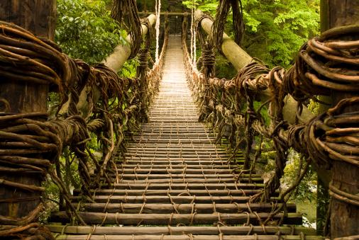 Durability「Kazurabashi Vine Bridge」:スマホ壁紙(2)