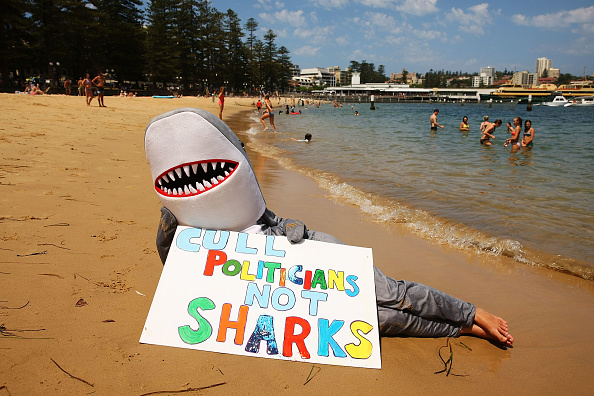 Human Role「Demonstrators Protest Against WA Shark Culling Policy」:写真・画像(19)[壁紙.com]