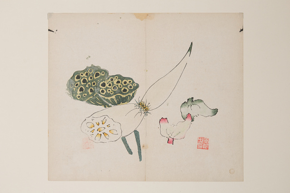 Plant Pod「Page From Shi Zhu Zhai. Creator: Unknown.」:写真・画像(6)[壁紙.com]
