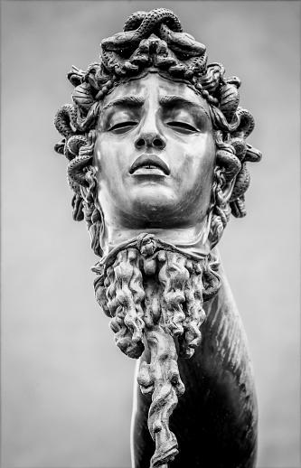 Animal Arm「Benvenuto Cellini, Perseus (Perseo), detail of the head of Medusa」:スマホ壁紙(14)