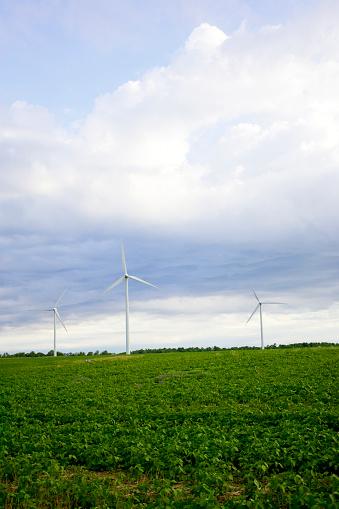 Bruce Peninsula「Three Wind Turbines In Field, Tiverton, Bruce Peninsula, Ontario」:スマホ壁紙(9)