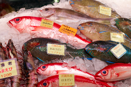 Market Stall「Pacific fish on japanese market stand」:スマホ壁紙(6)