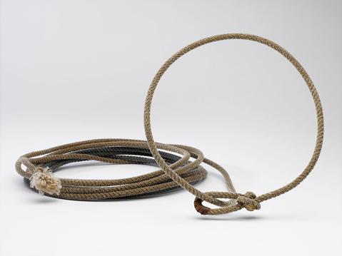 Horse「Lasso Rope」:スマホ壁紙(18)