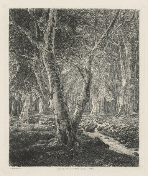 1870-1879「Bois De Pierrefonds」:写真・画像(18)[壁紙.com]