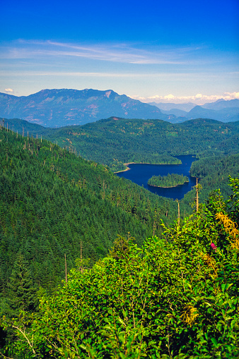 British Columbia Coast Mountains「Southern British Columbia Forest」:スマホ壁紙(4)