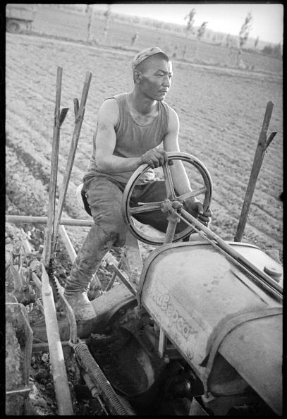 Skull Cap「Tractor Operator」:写真・画像(18)[壁紙.com]