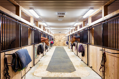 Animal Harness「Contemporary horse stalls」:スマホ壁紙(3)
