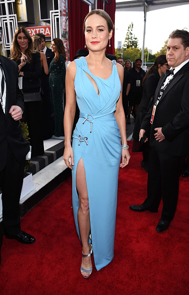 Atelier Versace「The 22nd Annual Screen Actors Guild Awards - Red Carpet」:写真・画像(17)[壁紙.com]