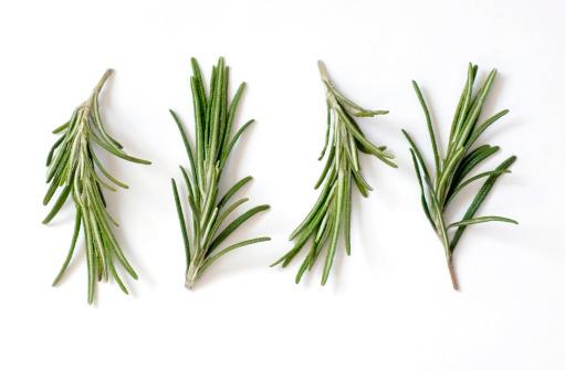 小枝「爽やかなローズマリー(Rosmarinus officinalis )、ホワイト」:スマホ壁紙(3)