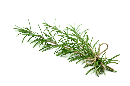 Branch - Plant Part「Fresh rosemary sprigs tied with twine at the base」:スマホ壁紙(13)