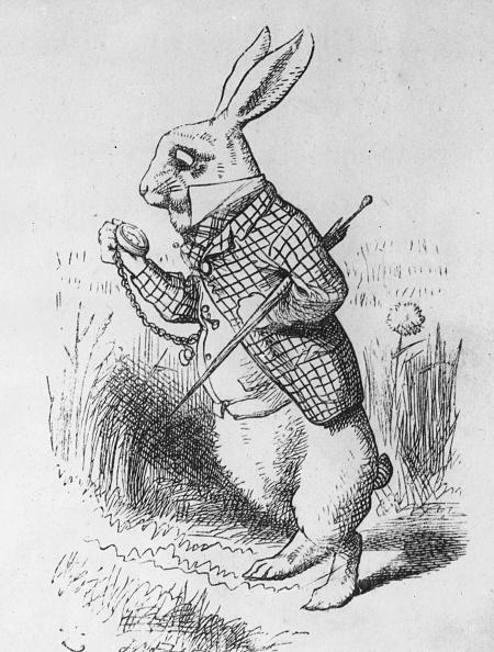 絵「The White Rabbit」:写真・画像(3)[壁紙.com]