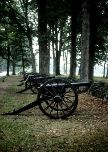 Battle「Antique cannons in woods」:スマホ壁紙(4)