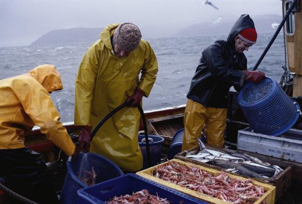 Fisherman「Working The Seas」:写真・画像(15)[壁紙.com]