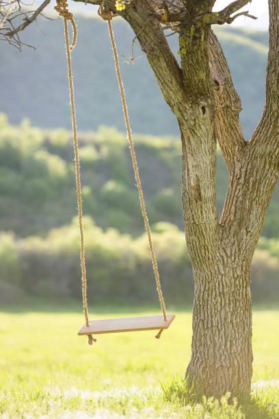Tree swing:スマホ壁紙(壁紙.com)
