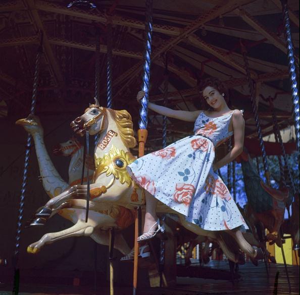 Traveling Carnival「Merry Go Round」:写真・画像(13)[壁紙.com]