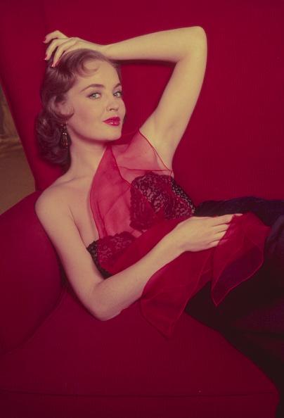 Lingerie「Red Seat」:写真・画像(3)[壁紙.com]