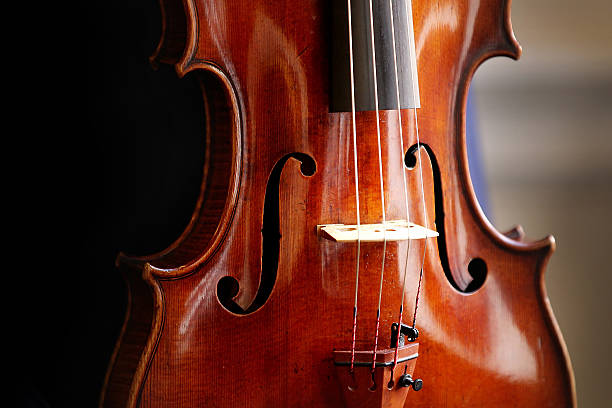Recital With The Stradivarius Archinto Viola, One Of The Rarest Musical Instruments In The World:ニュース(壁紙.com)