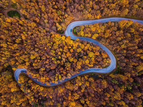 秋「無人偵察機: 航空遠征 - カラフルな秋の森で曲がりくねった田舎道」:スマホ壁紙(3)