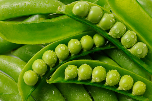Green Pea「Stacked opened fresh green peas with water droplets」:スマホ壁紙(8)