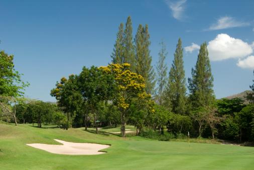 Sand Trap「Tropical golf course in Thailand」:スマホ壁紙(13)