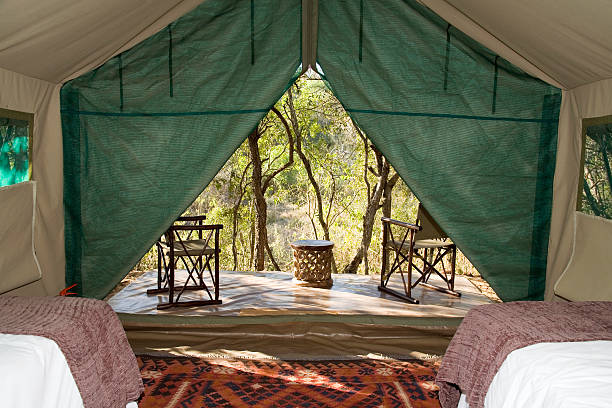 View from the inside of a luxury safari tent, KwaZulu Natal Province, South Africa:スマホ壁紙(壁紙.com)