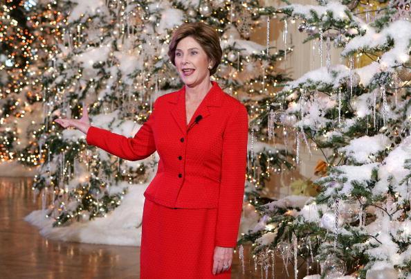 Human Arm「First Lady Laura Bush Shows White House Christmas Decorations」:写真・画像(5)[壁紙.com]