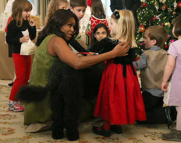 Sunny「First Lady Debuts White House Holiday Decorations」:写真・画像(8)[壁紙.com]