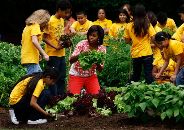 Horticulture「First Lady Michelle Obama Holds Food And Nutrition Event In WH Garden」:写真・画像(7)[壁紙.com]