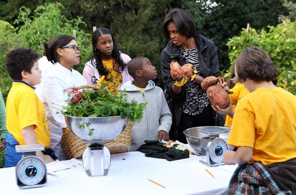 Alex Wong「First Lady Hosts White House Kitchen Garden Fall Harvest」:写真・画像(9)[壁紙.com]
